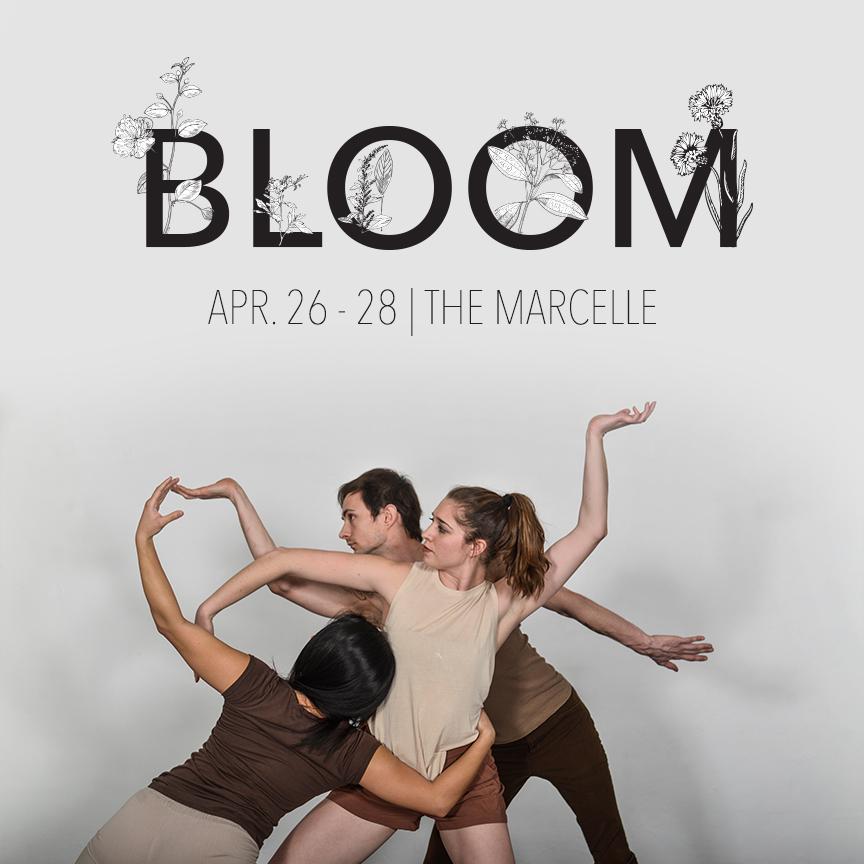 Bloom_Inta7.jpg