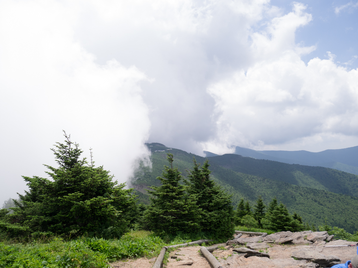 The view at one of peaks on Deep Gap Trail