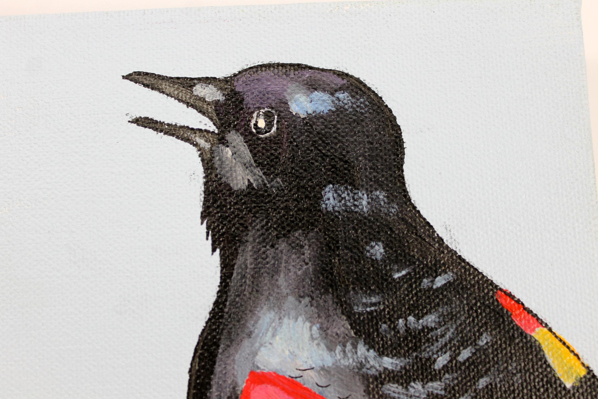blackbird2.jpg