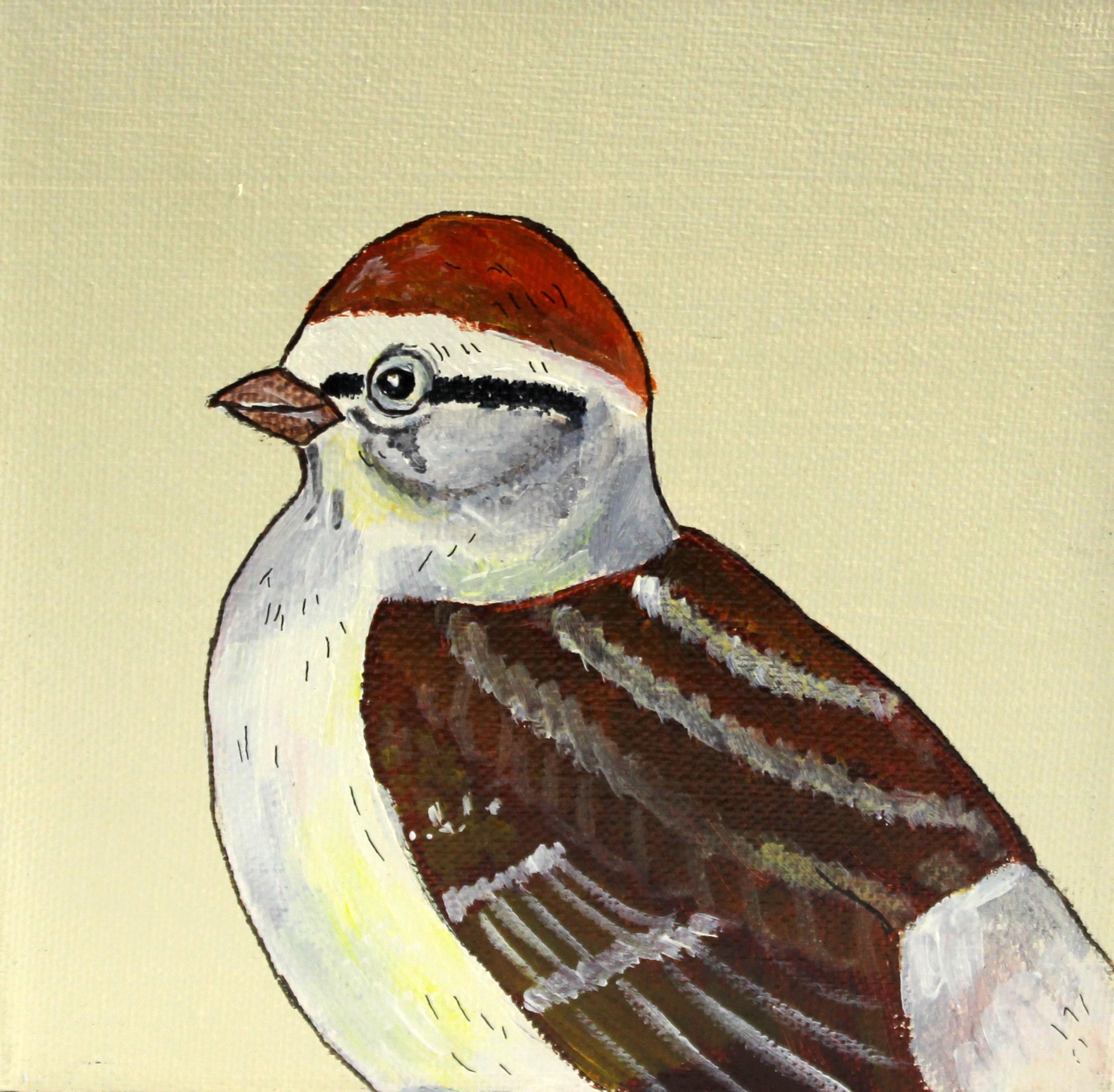 chippingsparrow4.jpg
