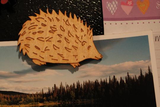 hedgehogmagnet2.jpg