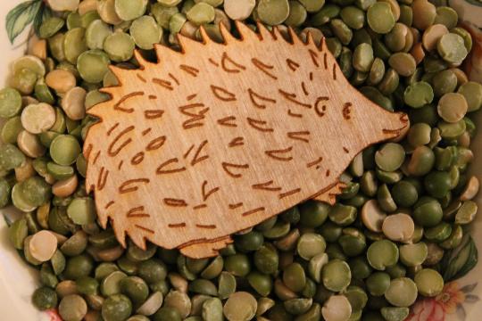 hedgehogmagnet4.jpg