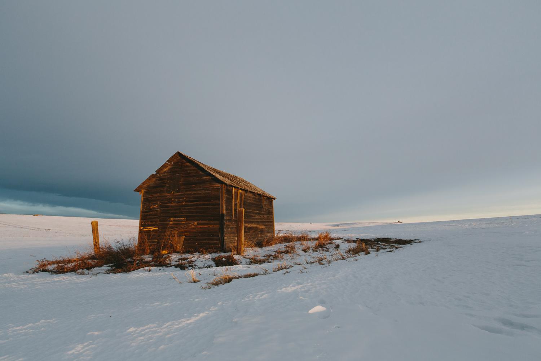 Steve_Seeley-Prairie_White-01.jpg