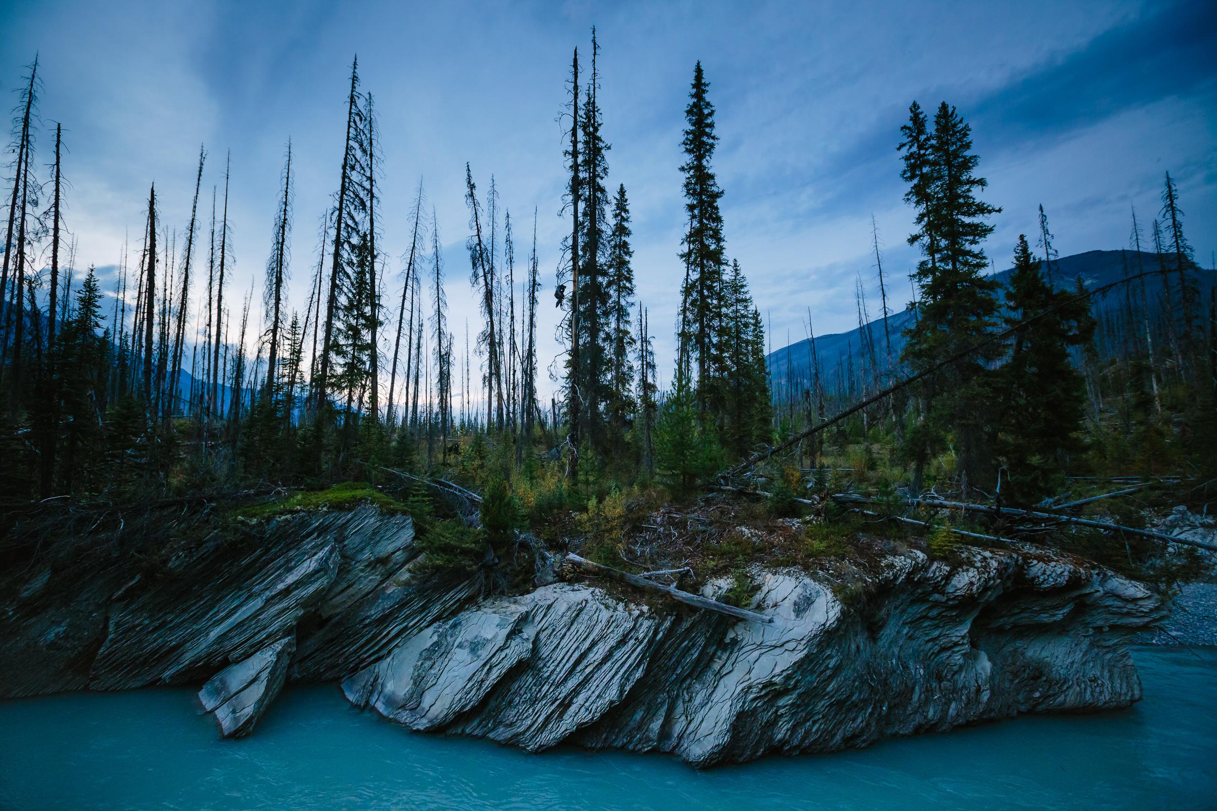 steve_seeley-kootenay-blue.jpg
