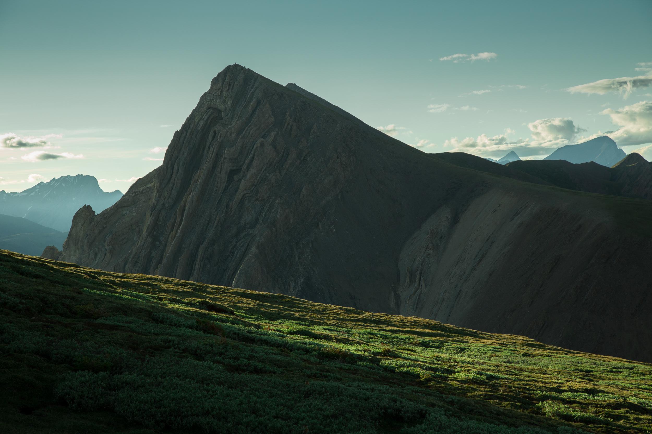 steve_seeley_grizzly_peak_meadow.jpg