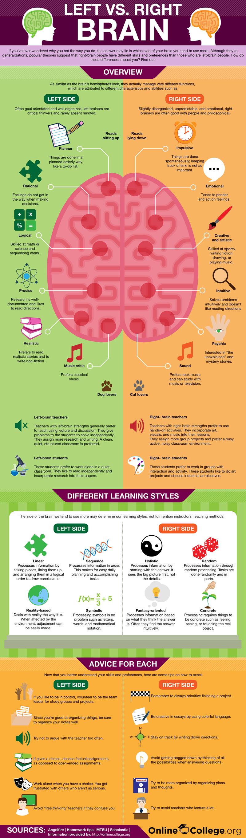 potential psychology blog left brain right brain myth