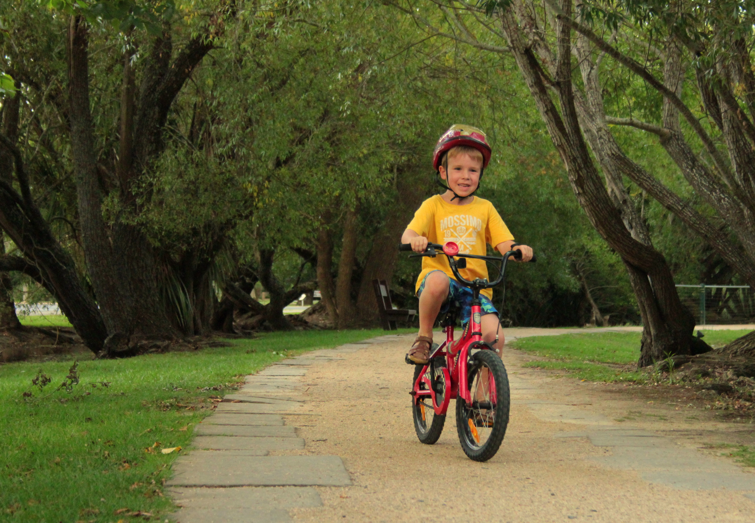 Mr 6 conquered his bike, training wheels free, last weekend so it was time for some practice.