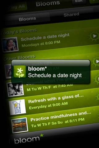 bloom happiness app