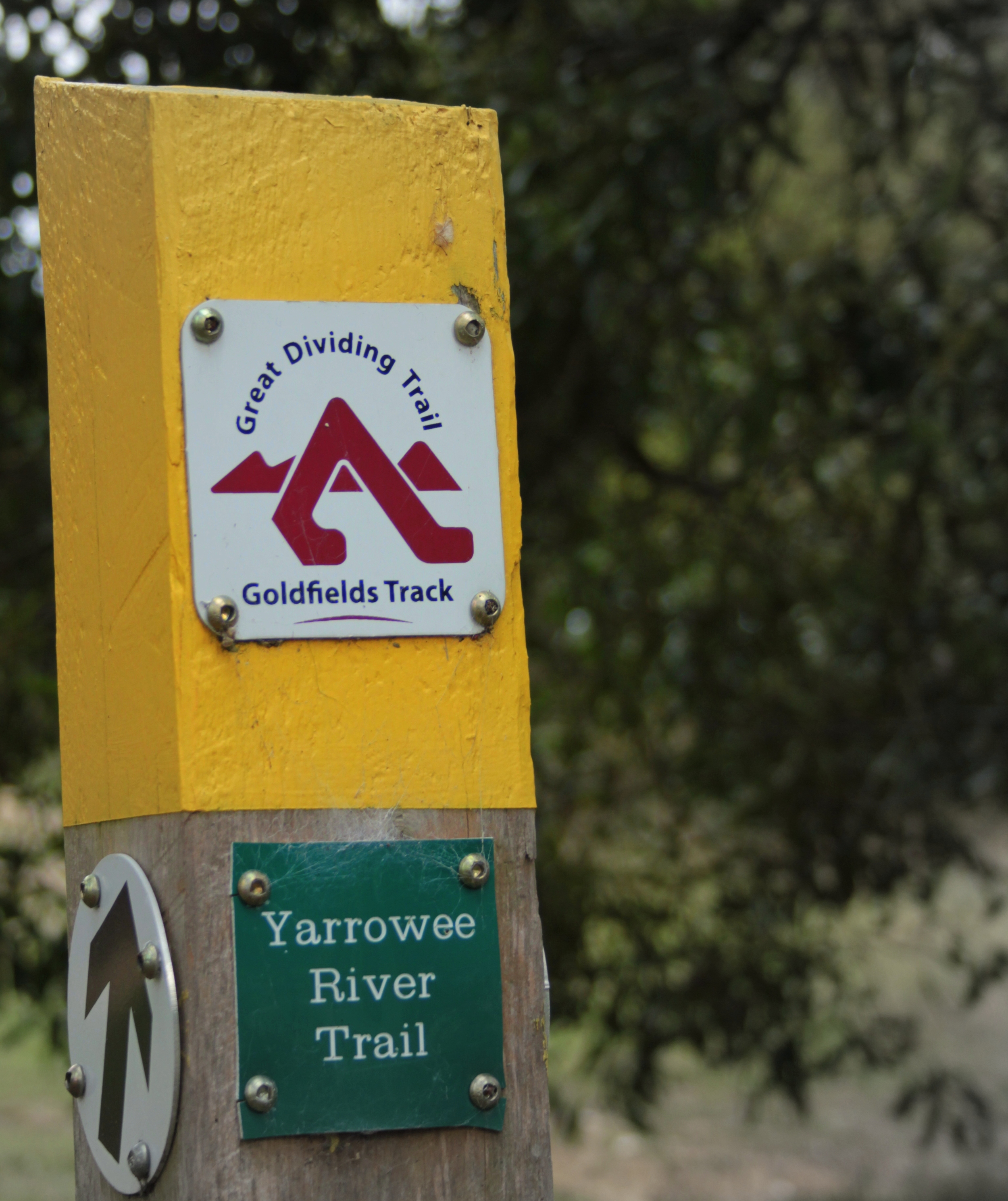 And we're off. Our third stretch of the Yarrowee River Trail.