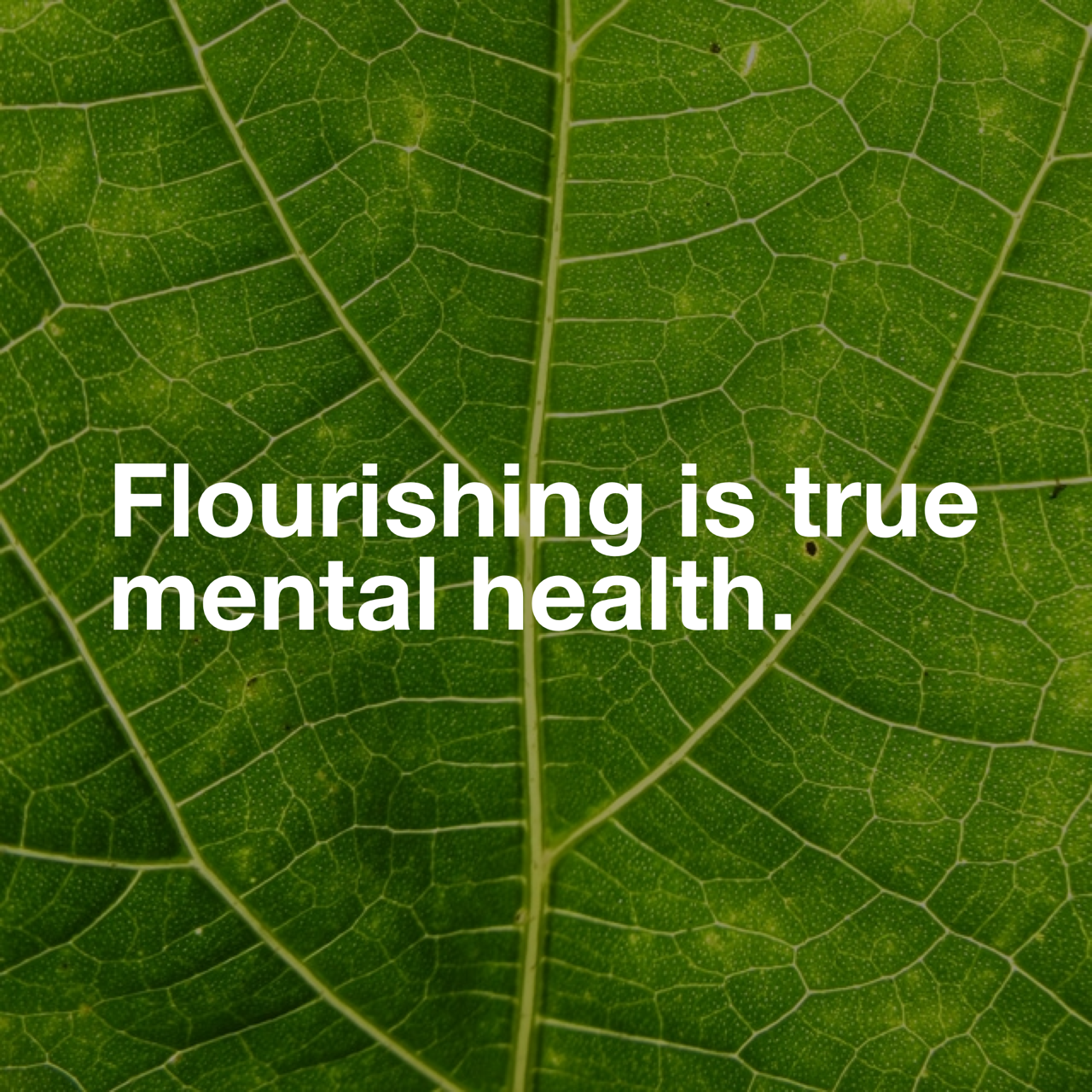 Flourishing is true mental health