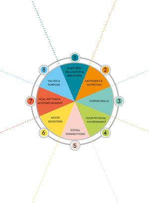 Suzy's Vitality Wheel