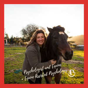 Harnessing Wellness Psychology and Equine Assisted Psychology - www.harnessingwellness.com