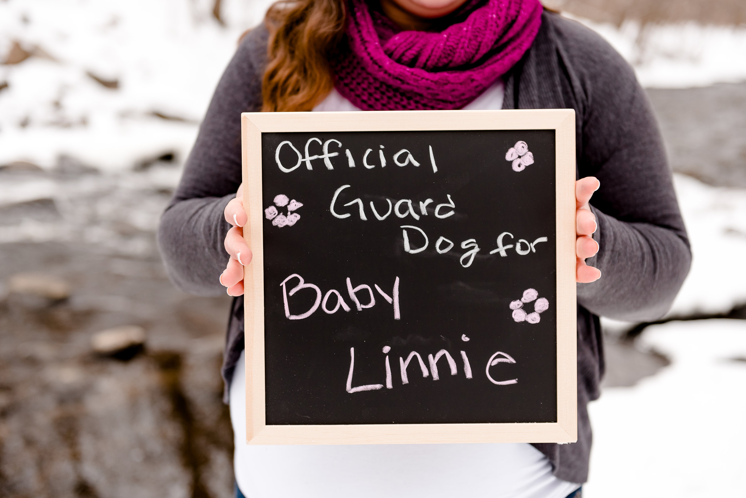 Guard Dog Pregnancy Photo Ideas - MN Twin Cities Maternity Photographer