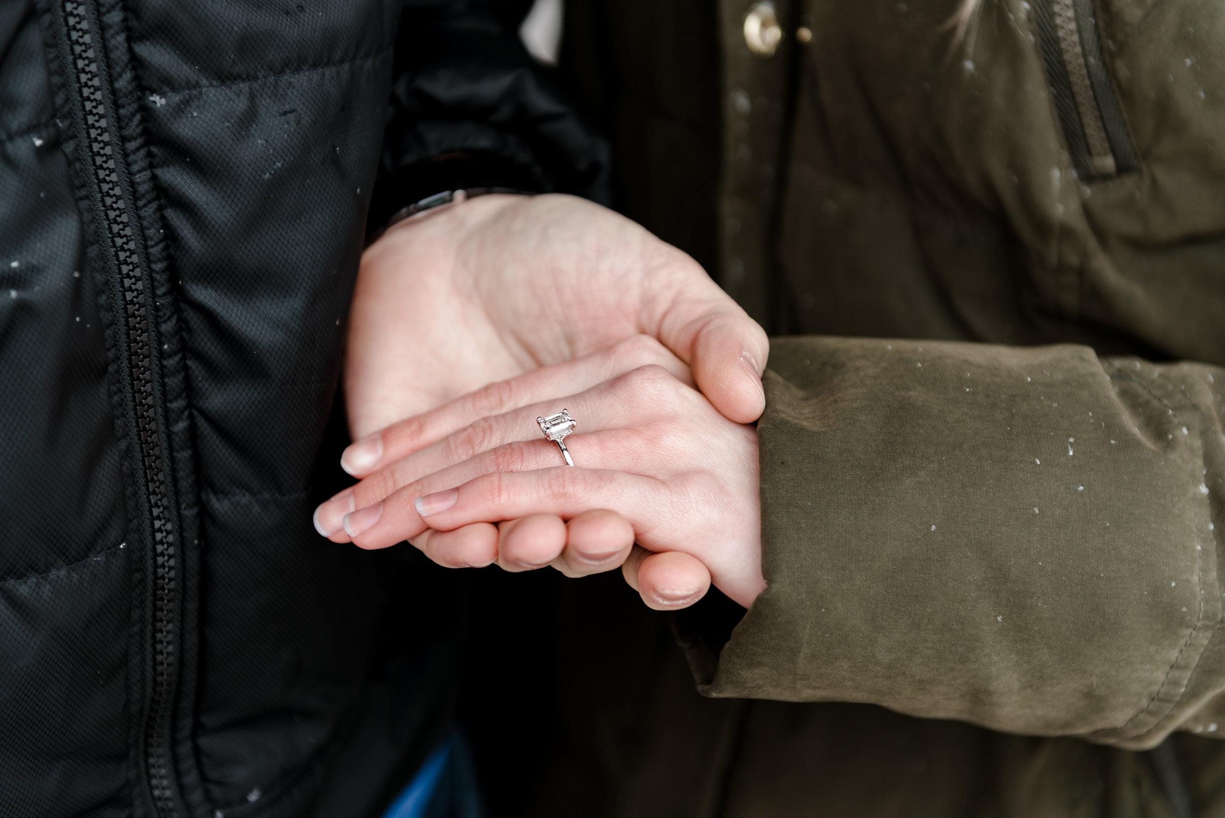 Ericka and Ryan - Proposal-58.jpg