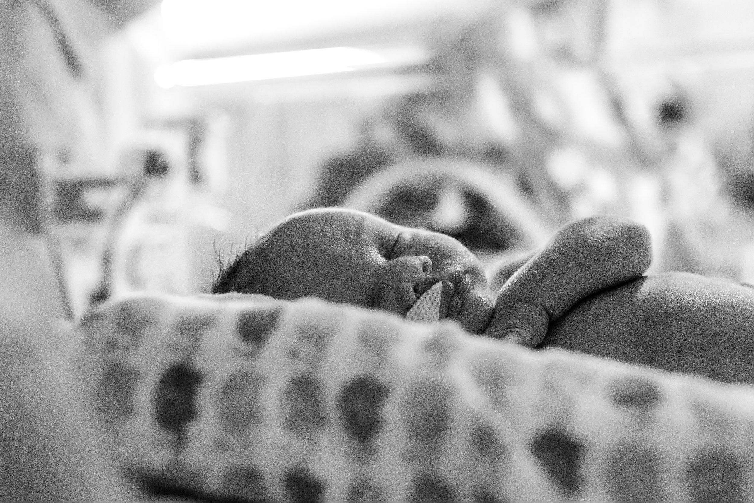 Kurtz Twins - Birth -17.jpg