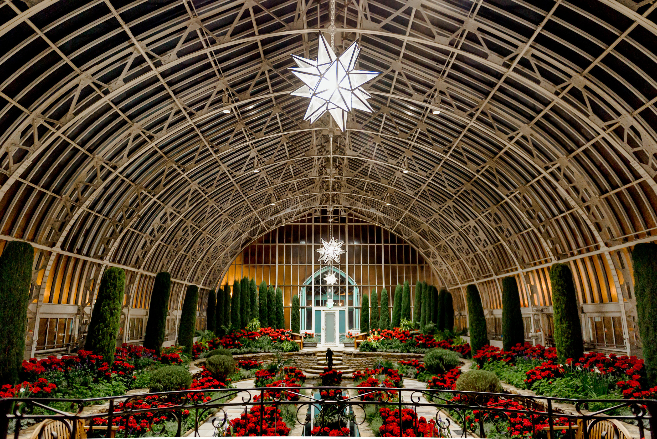 Como Conservatory Holiday Poinsettia Display - Romantic Proposal Locations in MN - Christmas Proposal Ideas