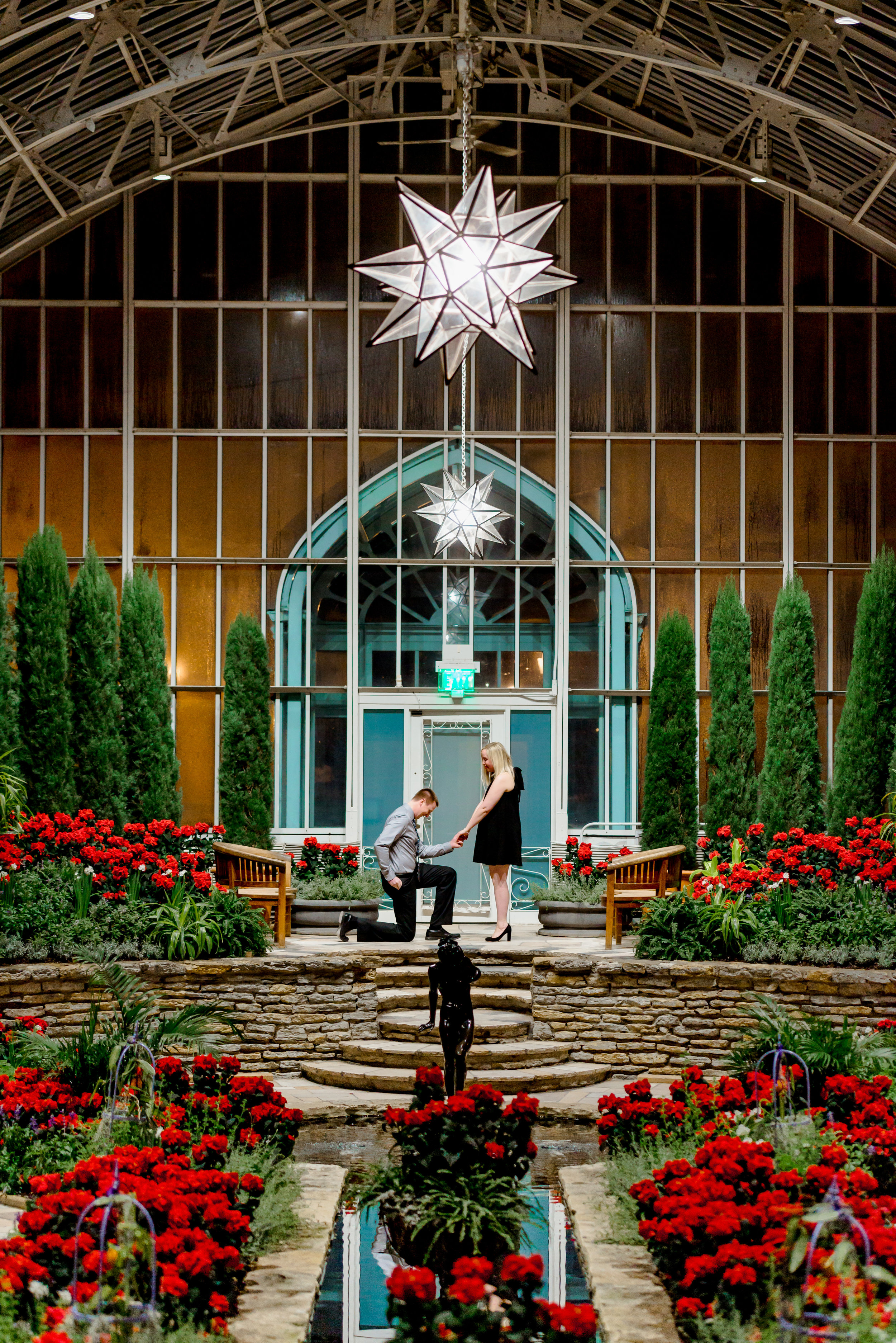 Surprise Proposal Photographer in MN - Como Conservatory Marriage Proposal - Luxury Engagement Photographer