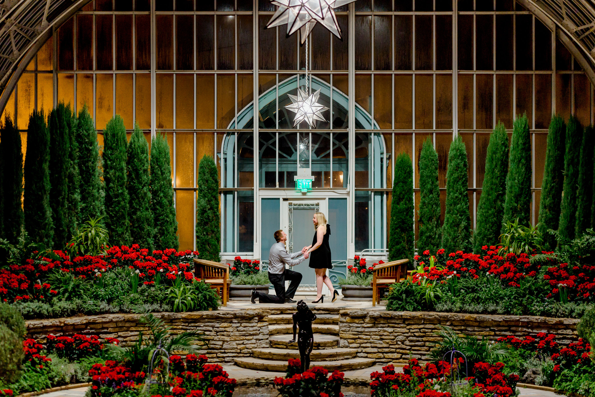 Romantic Proposal Locations in MN - Como Conservatory in St. Paul - Holiday Proposal Photographer MN