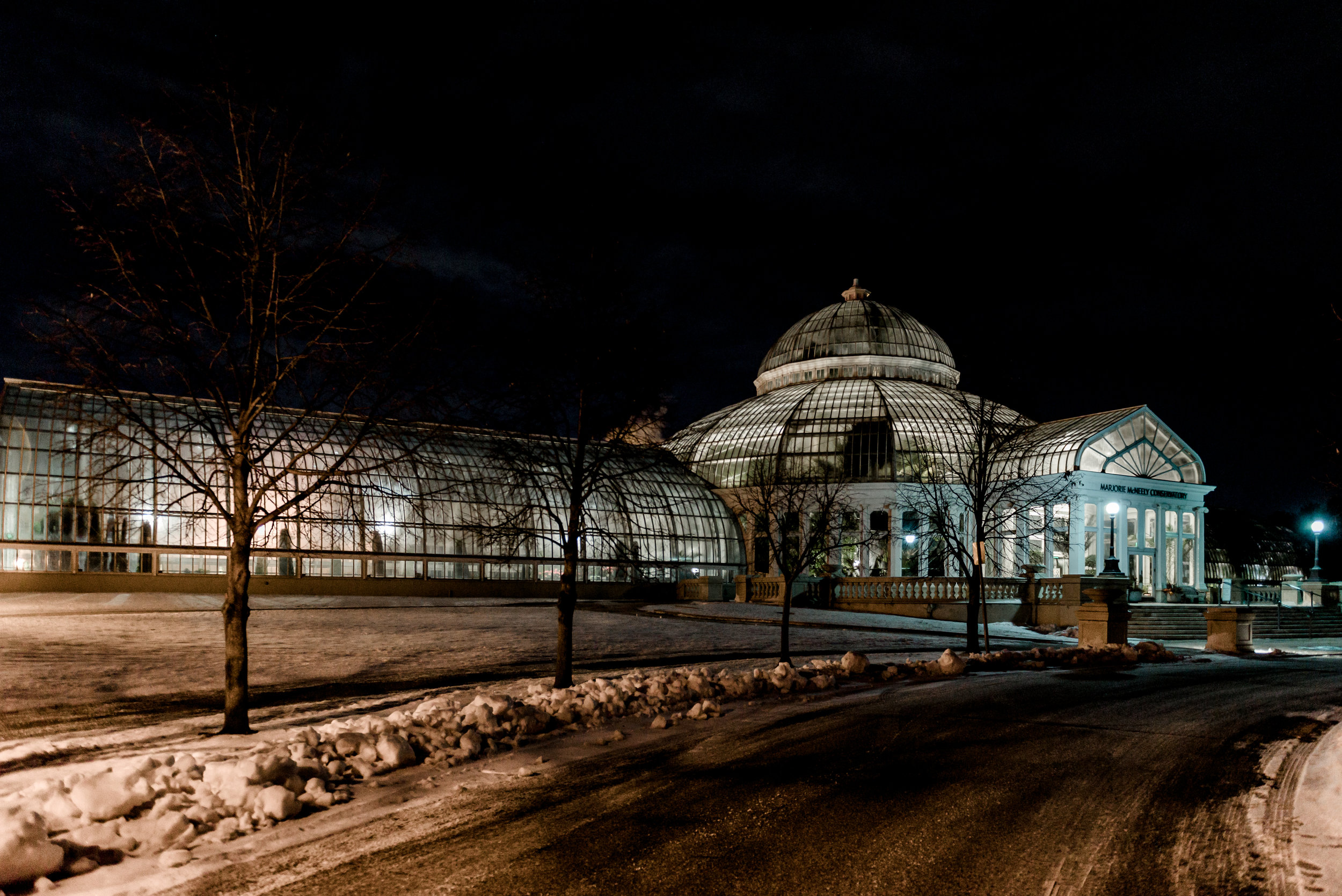 Como Conservatory at Night - St. Paul Proposal Photographer