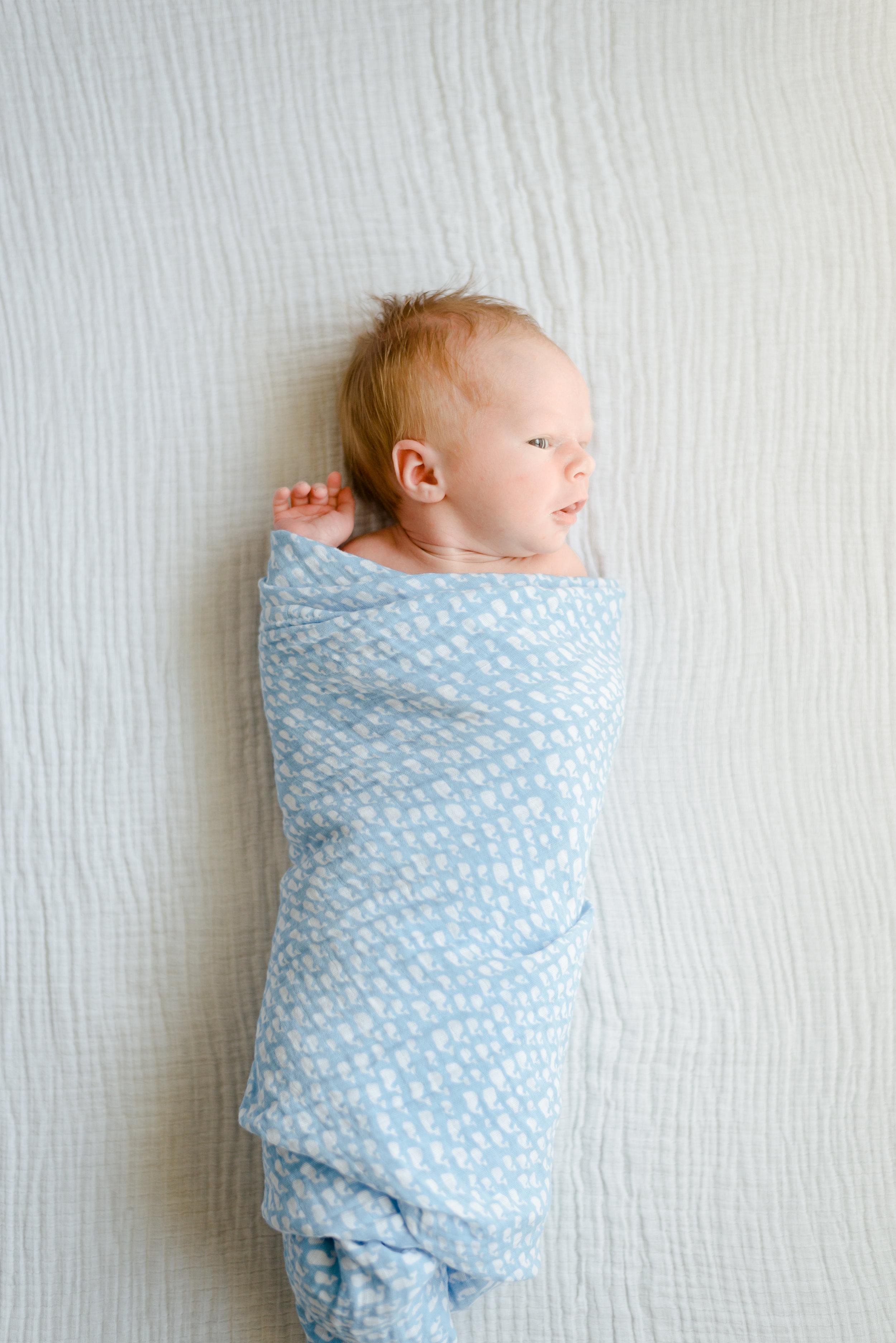 Baby Holden - Newborn-9.jpg