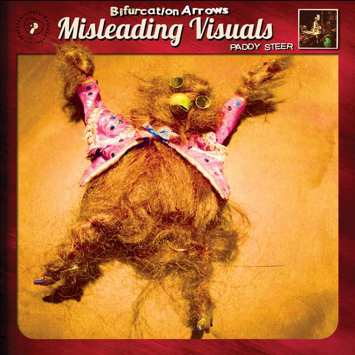 BIFURCATION ARROWS MISLEADING VISUALS - Paddy Steer  Album numérique
