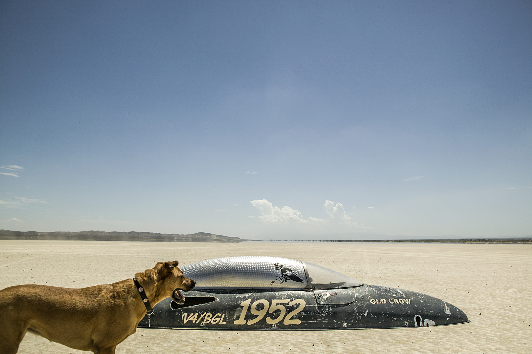The canopy of a belly tank race carout in the Mojave desert.
