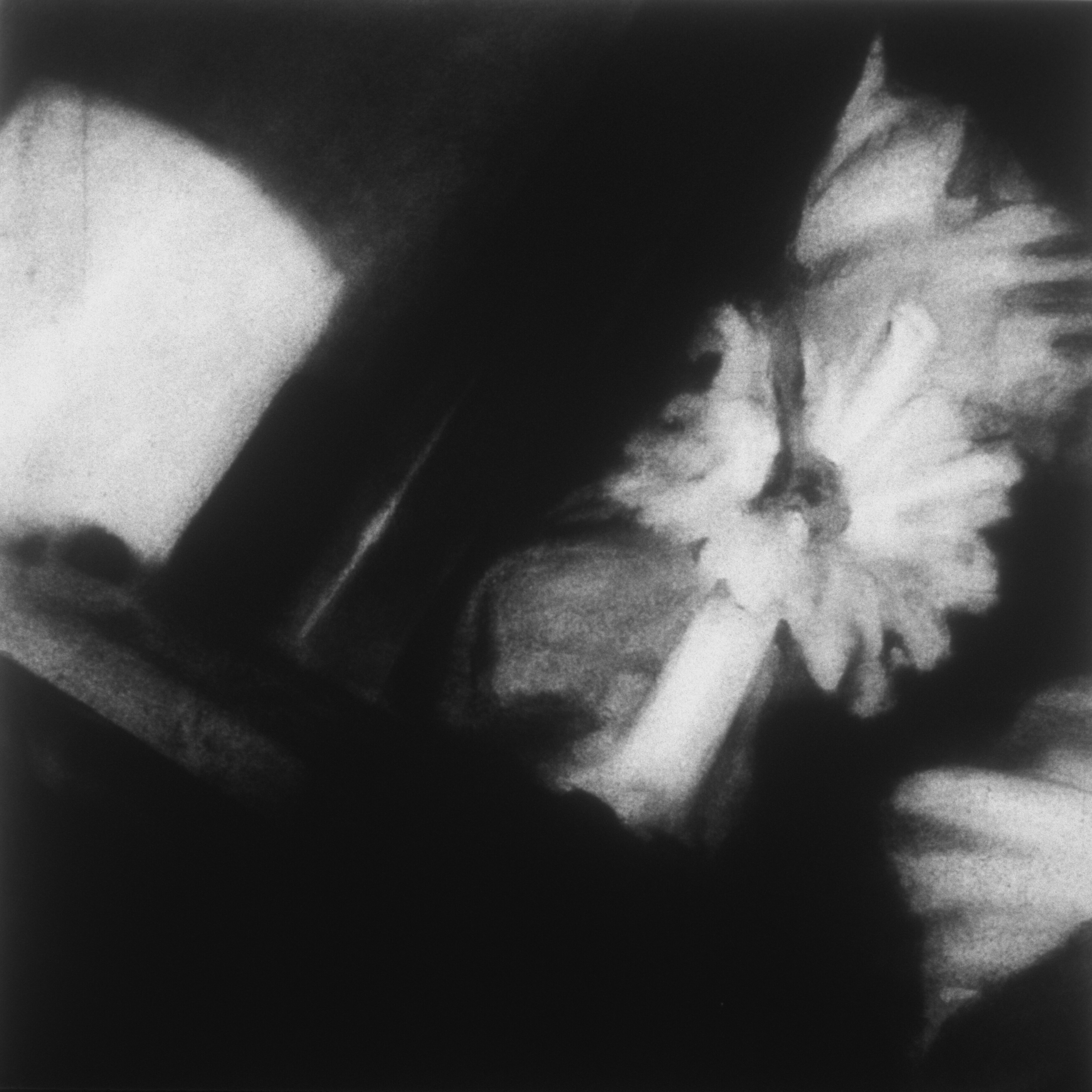 "Untitled (May 1999-3),  1999 Charcoal on paper 36"" sq.   private collection"