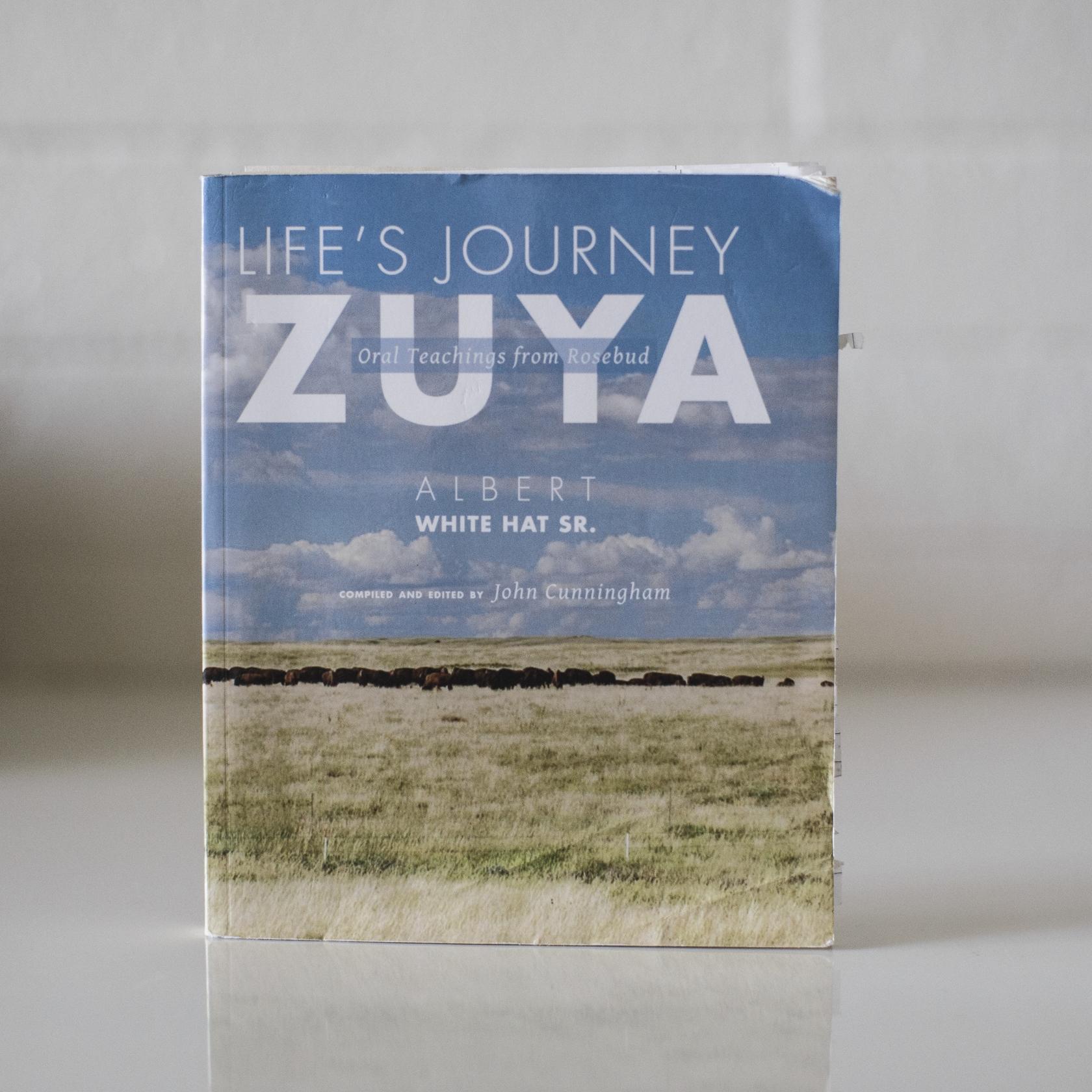 Life's Journey: Zuya
