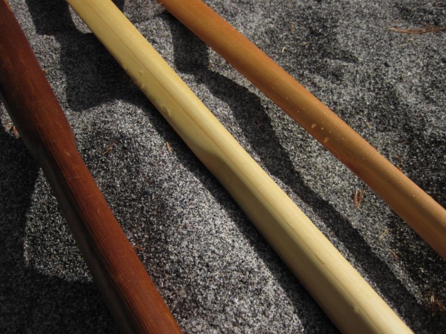 left to right: Western redcedar, Alaska-cedar, and Douglas-fir