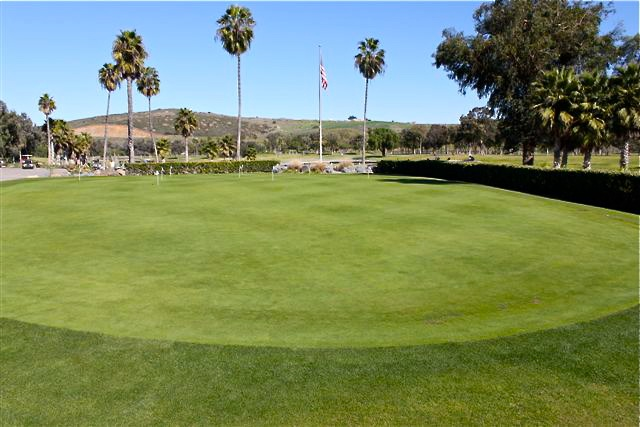 Golf courses must keep their greens in pristine condition. They are able to do this by maintaining the level of thatch in the turf. A regular maintenance dose of ThatchPro+™ can help your lawn compete with the links.
