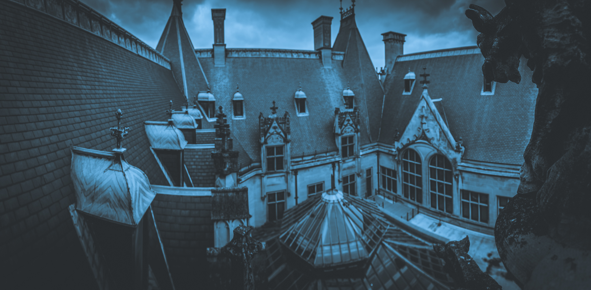 001biltmorehouse-southerngothic-mattrossphotography.com.jpg