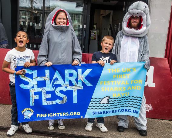sharkfest-58.jpg