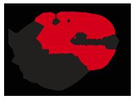 mfd_logo2.png