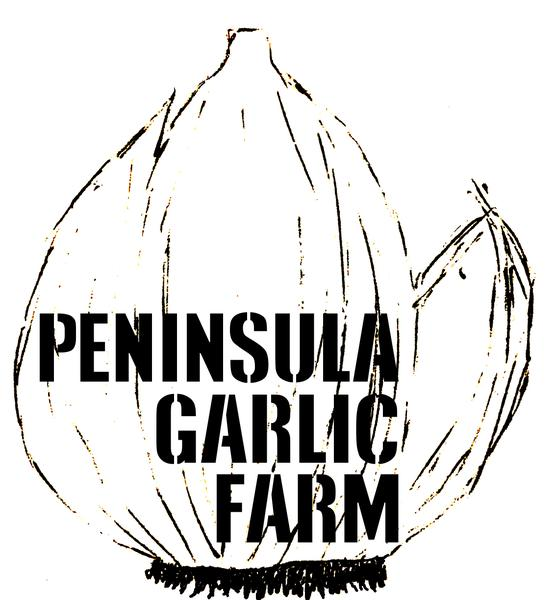 garlic farm.jpg