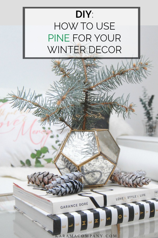 PINE-WINTER-DECOR-DIY.jpg