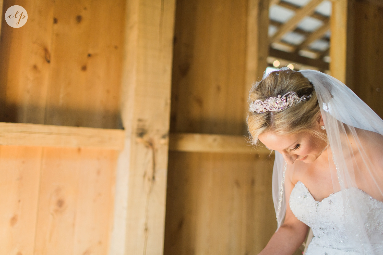 Rivercrest-Farm-Ohio-Wedding-Photography_4005.jpg