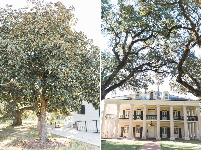 oak-alley-plantation-new-orleans-destination-wedding-photographer_9686.jpg