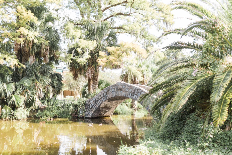 city-park-new-orleans-destination-wedding-photographer_9760.jpg