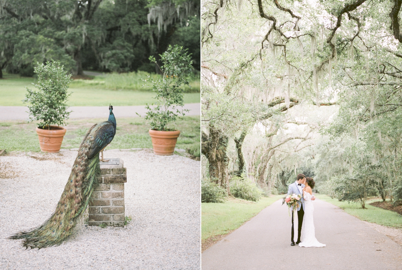 Charleston-South-Carolina-Beautiful-Film-Wedding-Photographer-Magnolia-Plantation-and-Gardens-Wedding-Photos_5139.jpg