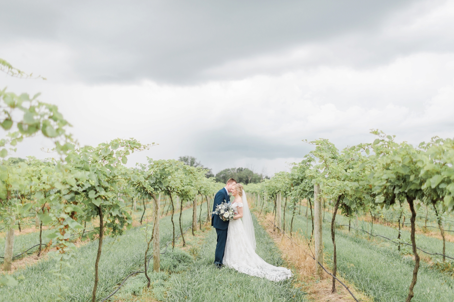 Fine-Art-Film-Daniels-Vineyard-Wedding-Photography_5922.jpg