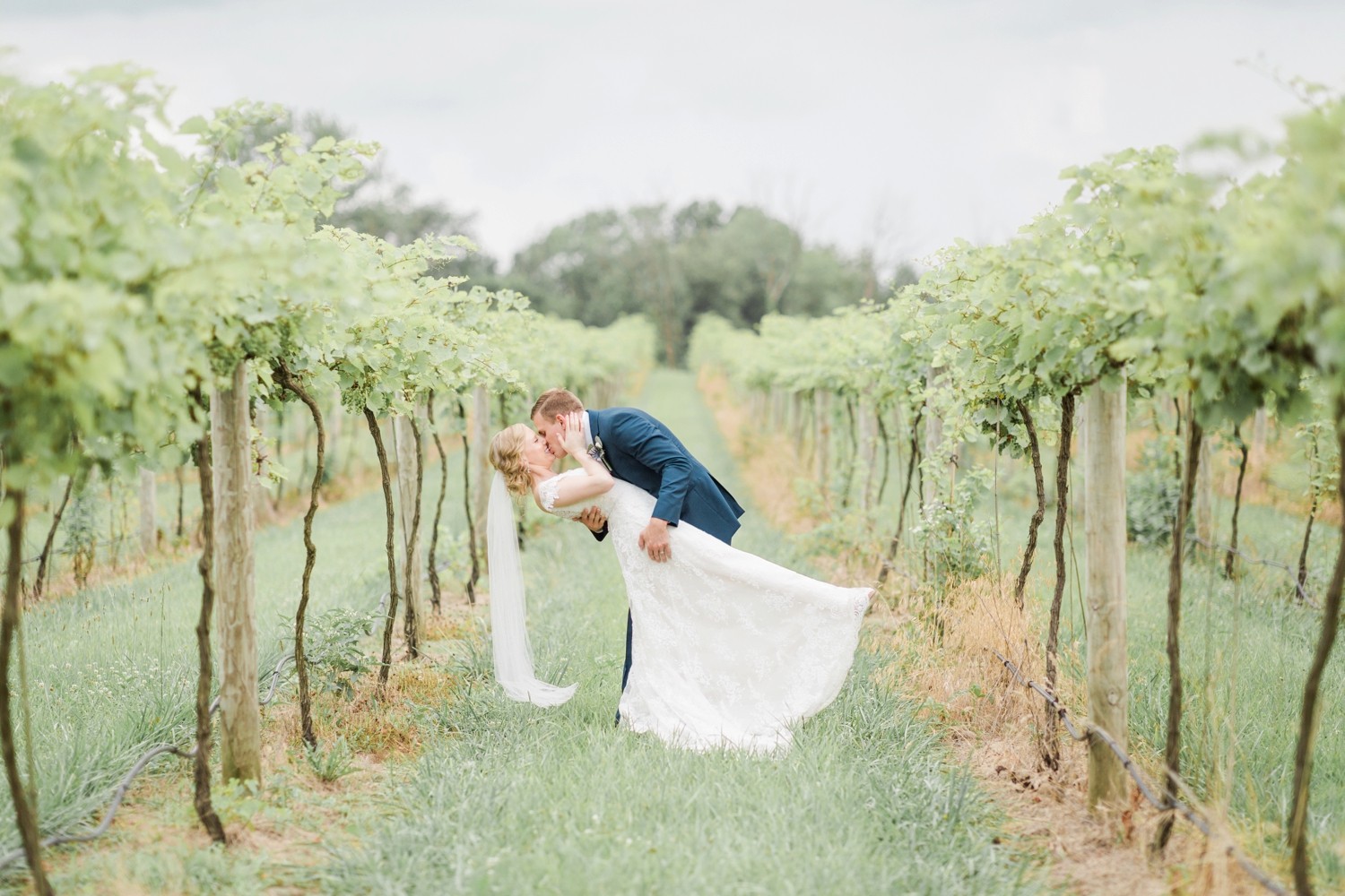 Fine-Art-Film-Daniels-Vineyard-Wedding-Photography_5942.jpg