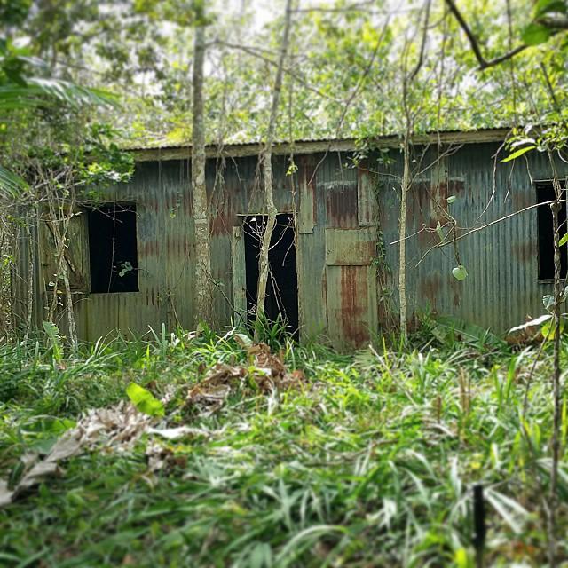 La última casa de Toño Bicicleta... #tonobicicleta #documental #puertorico #bartolo