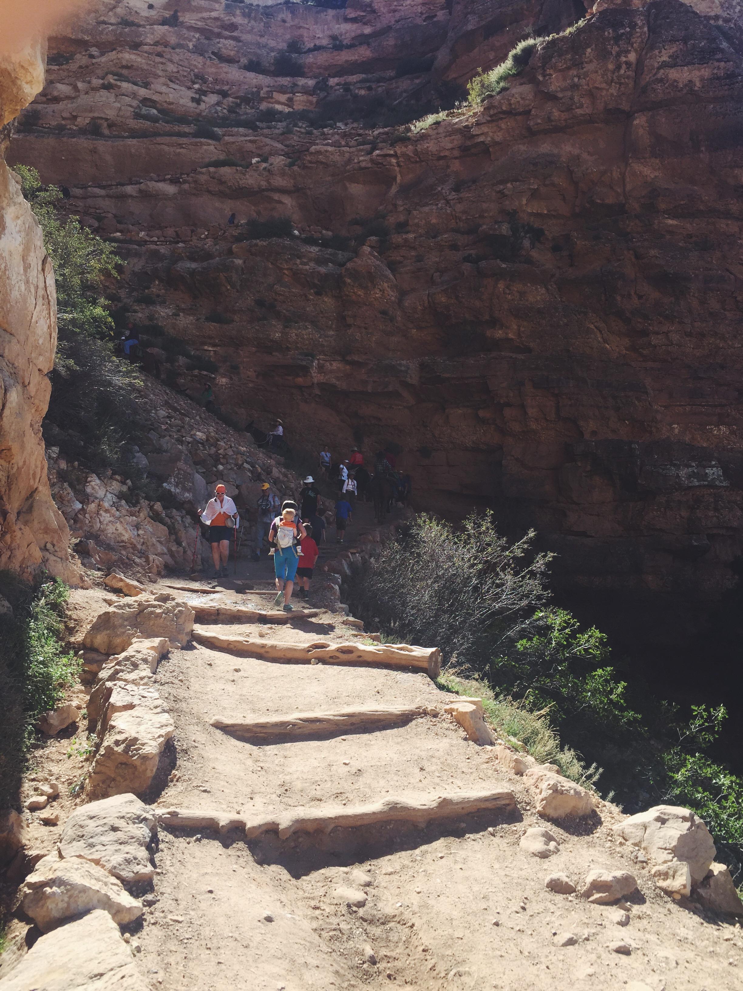 grand canyon6.jpg