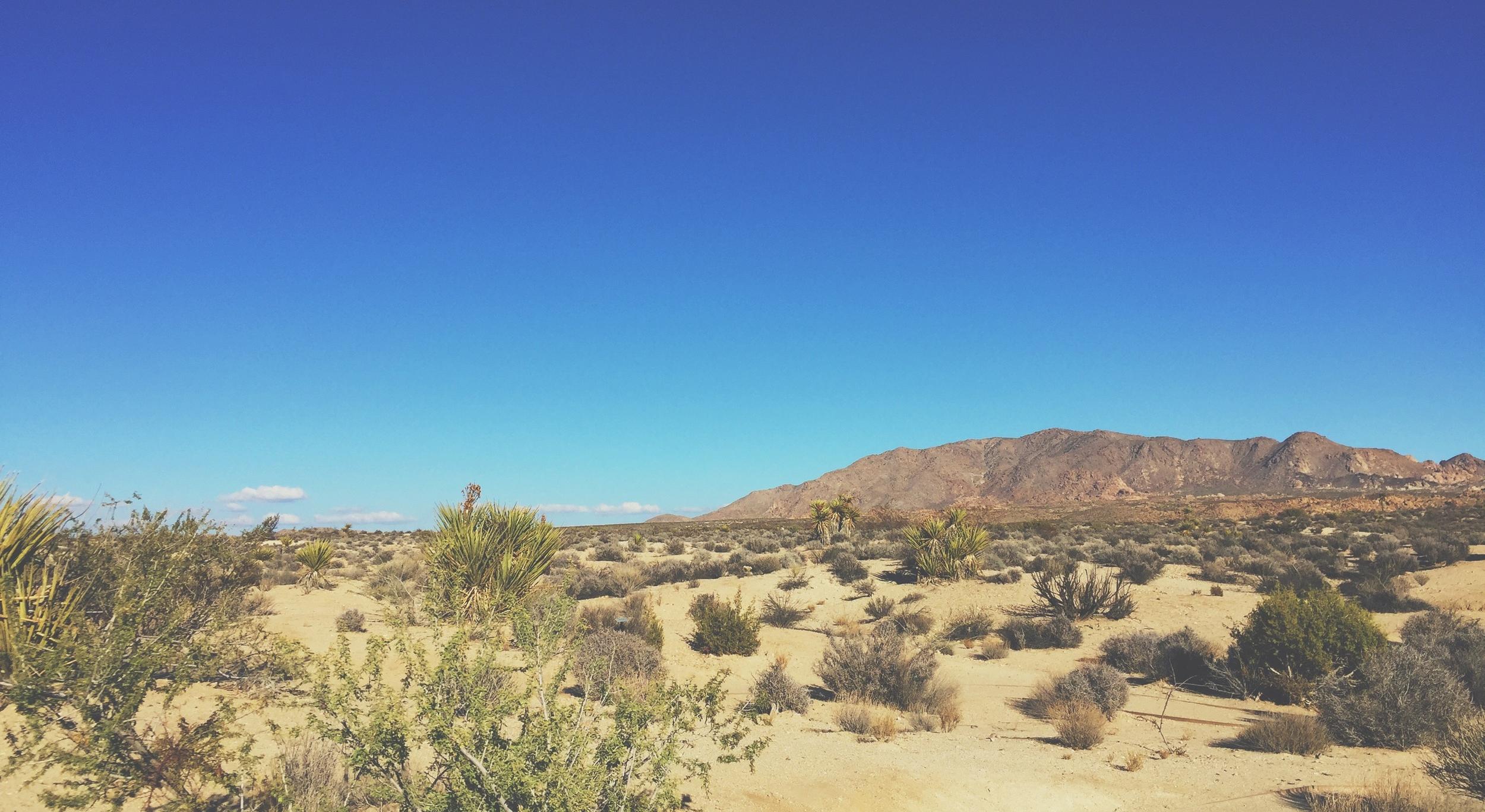 Mira, un desierto