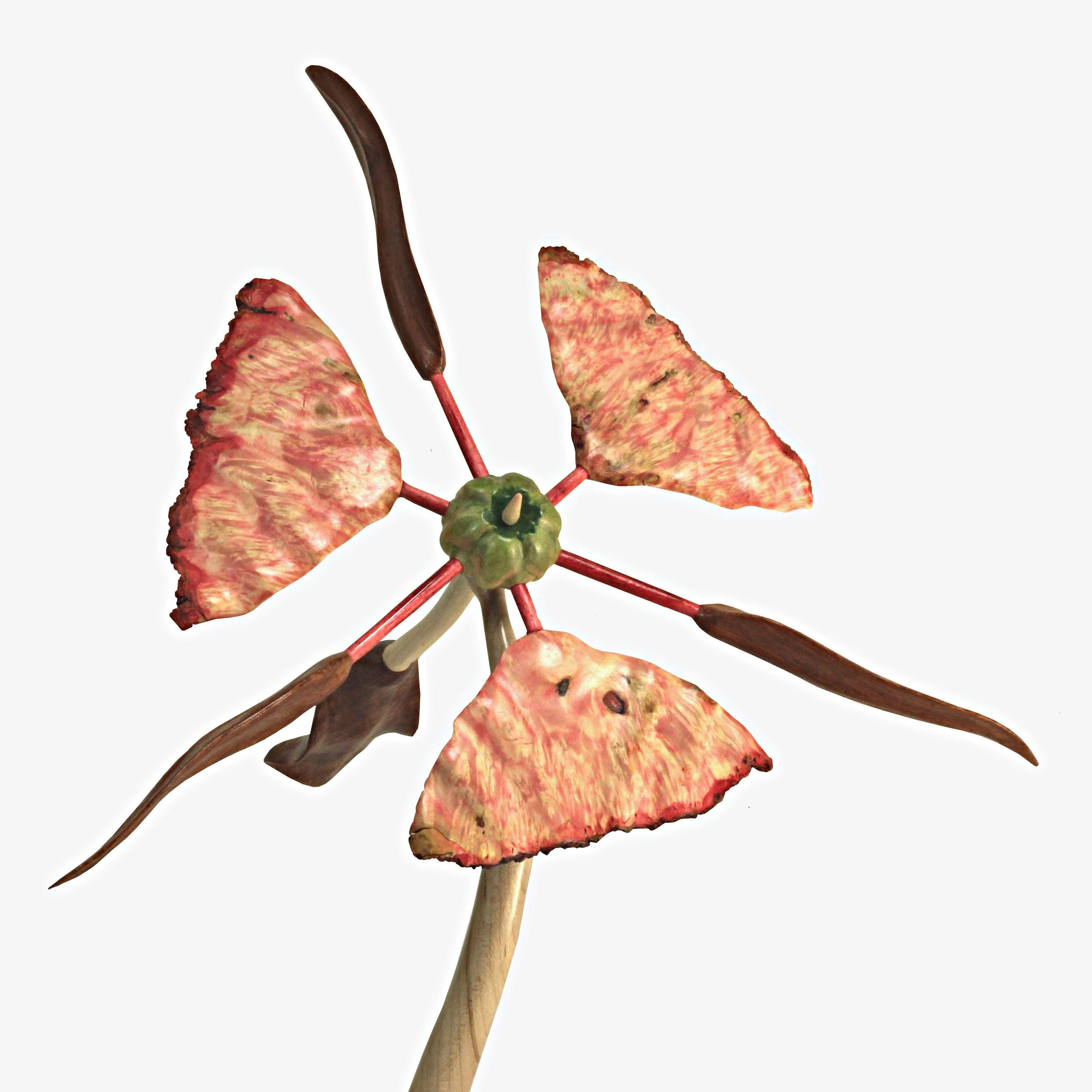 Bloom #6