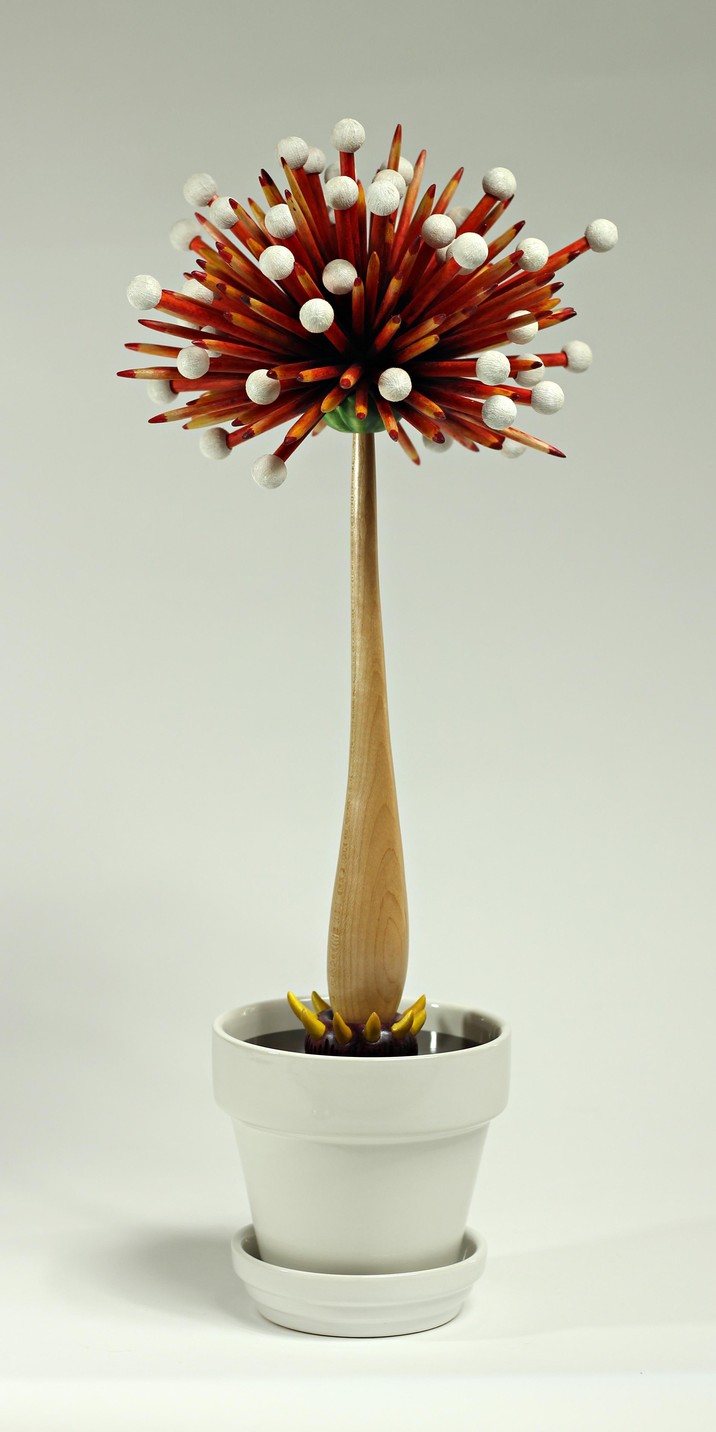 Bloom #14 by Sam Hingston