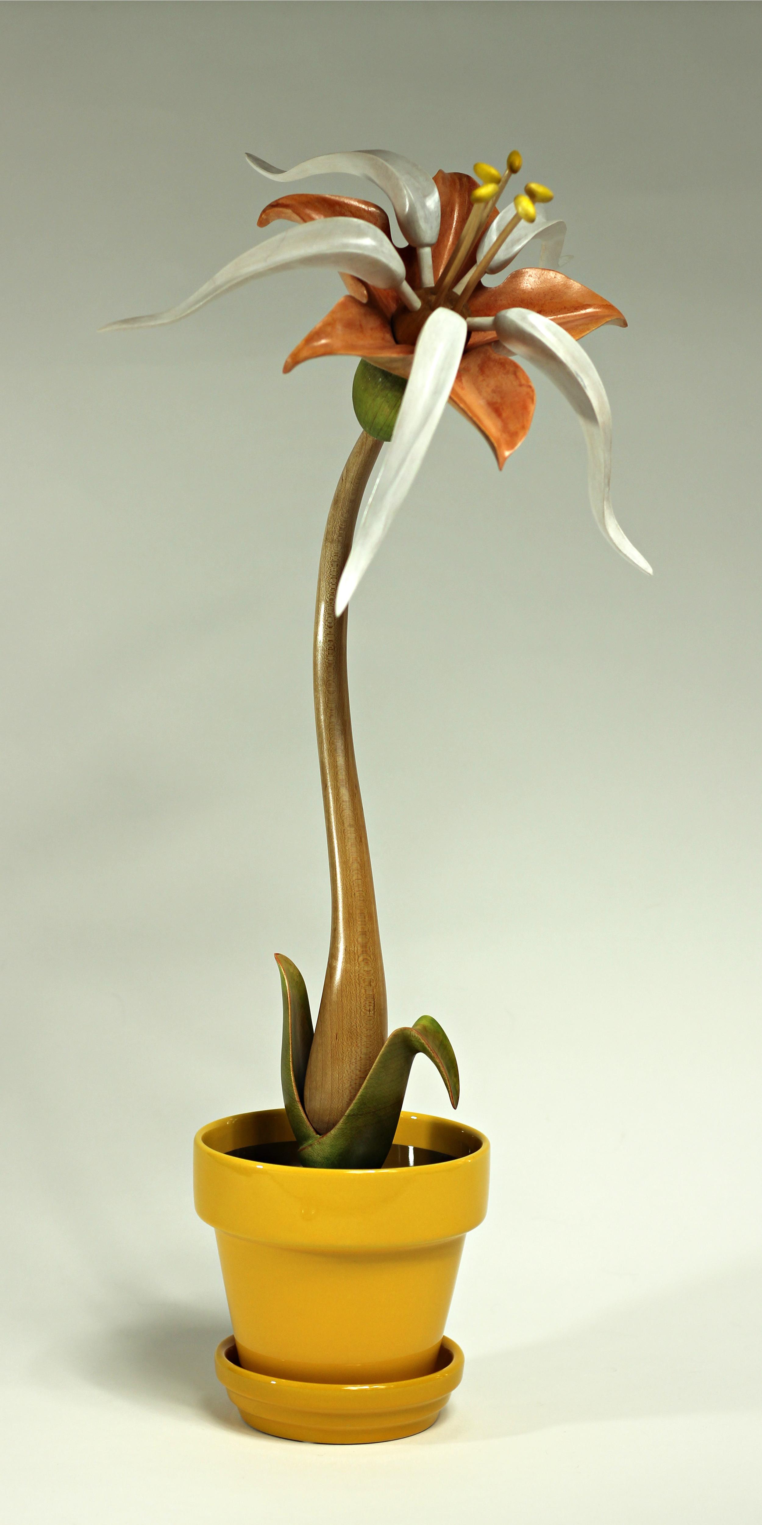 Bloom #15 by Sam Hingston