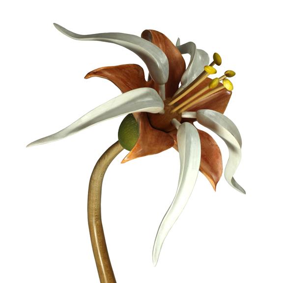 Bloom #15