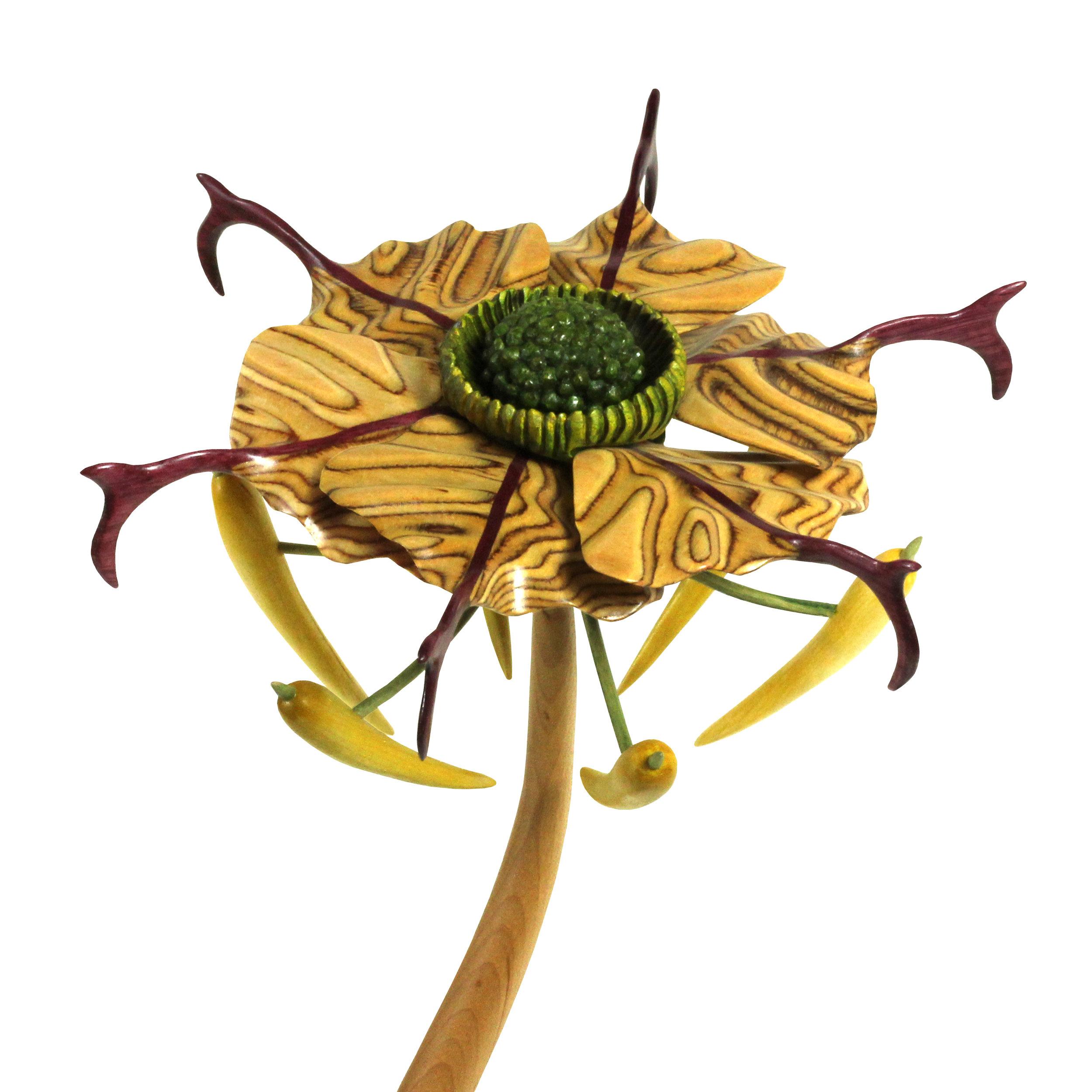 Bloom #4 by Sam Hingston