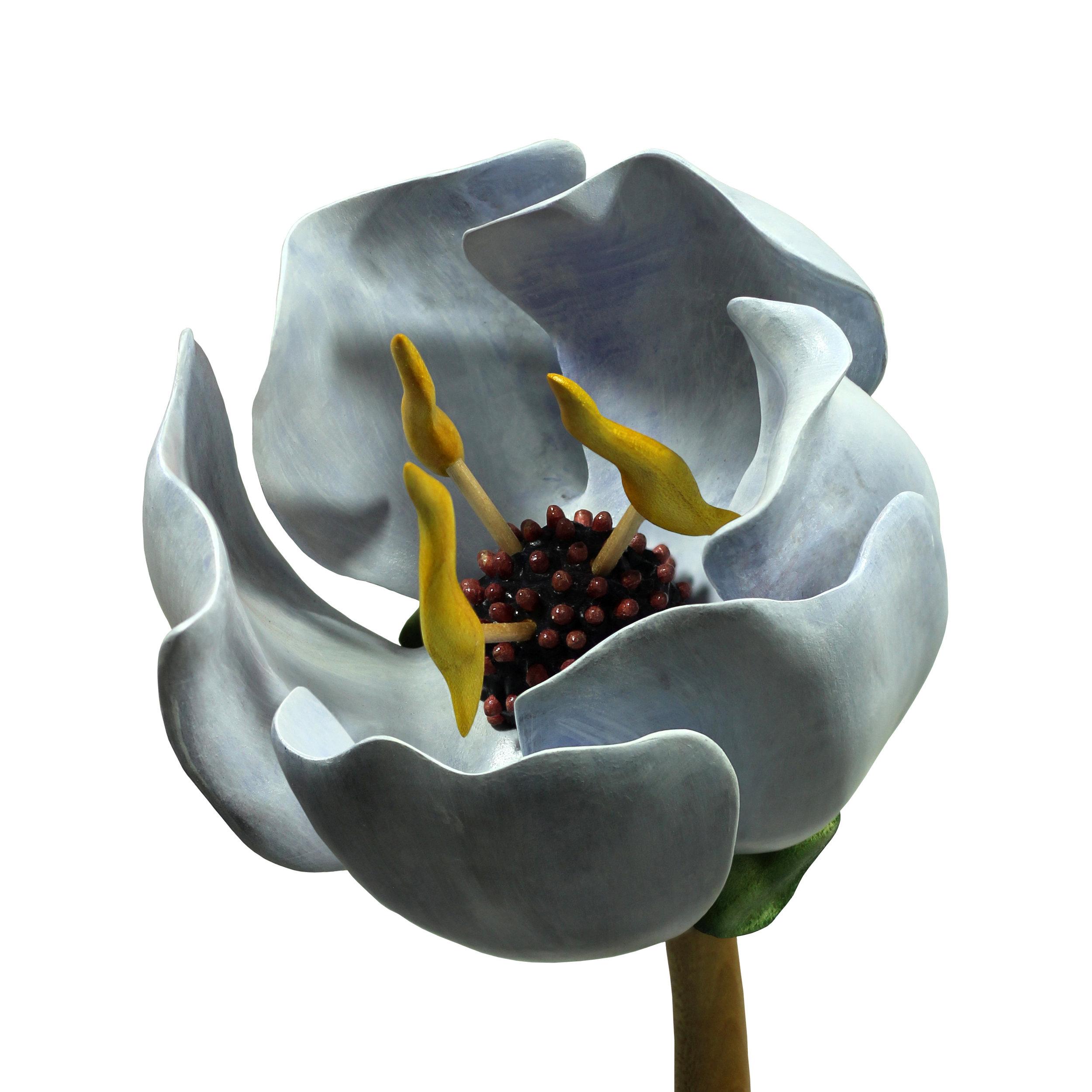 Bloom #21 by Sam Hingston